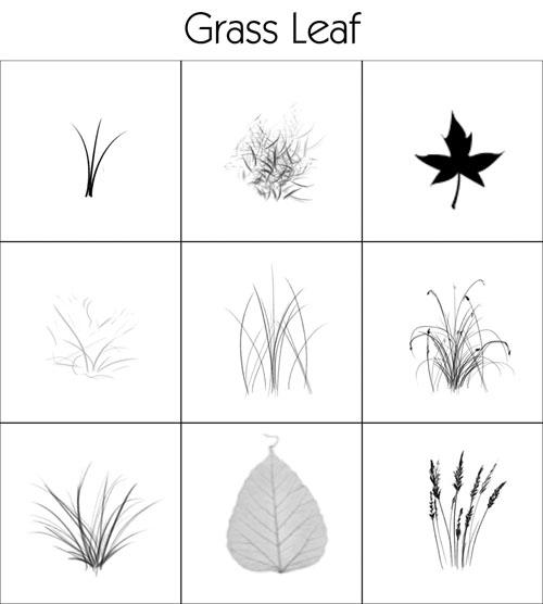 Brush – Grass & Leafs