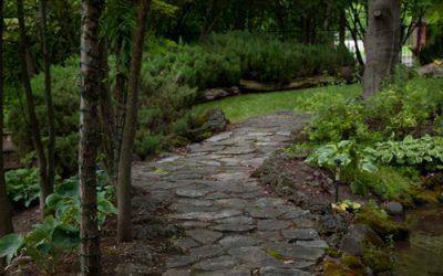 Background – Pathways