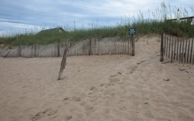 Background – Beach Fence